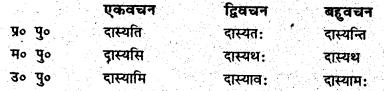 Bihar Board Class 6 Sanskrit व्याकरण धातु-रूपाणि 8