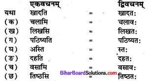 प्रहेलिका कक्षा 7 Bihar Board Chapter 5