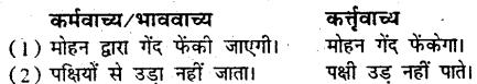 Bihar Board Class 9 Hindi व्याकरण वाच्य परिवर्तन- 5