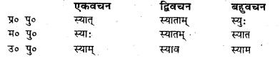 Bihar Board Class 7 Sanskrit व्याकरण धातु-रूपाणि 31