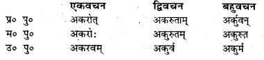 Bihar Board Class 7 Sanskrit व्याकरण धातु-रूपाणि 40