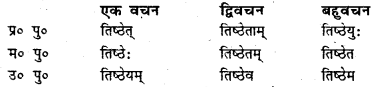 Bihar Board Class 7 Sanskrit व्याकरण धातु-रूपाणि 5