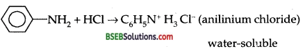 Bihar Board Class 12 Chemistry Solutions Chapter 13 Amines 94