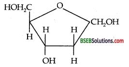 Bihar Board Class 12 Chemistry Solutions Chapter 14 Biomolecules 22