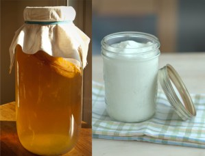 Permaculture Series- Get Cultured: Kombucha and Yogurt Making @ Brooklyn Society for Ethical Culture