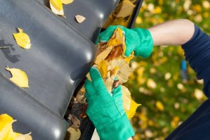Preparing Your Home From Autumn