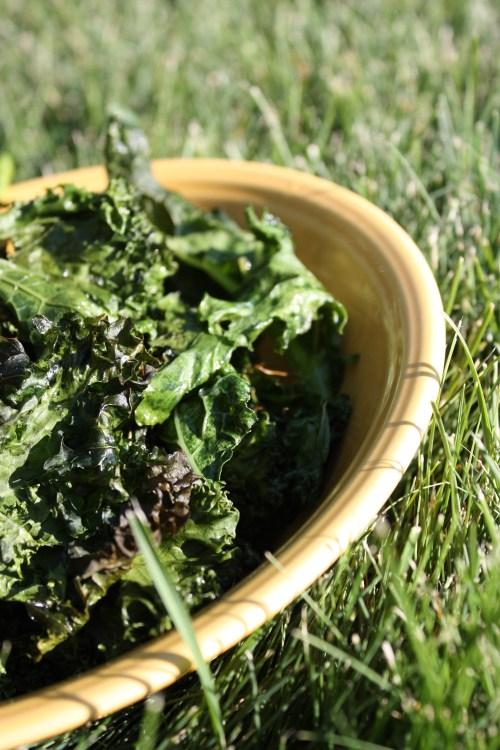 Kale Chips | bsinthekitchen.com