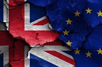 Brexit and the diseased liberal mind