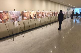 Visitors look at images of torture and death reportedly carried out by Syrian government forces, on display in the halls of UN headquarters in New York on 12 March, 2015 (AA)
