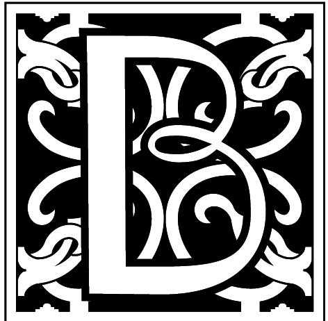 Bridges DP logo