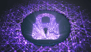 卡利娛樂城安全加密-卡利系統安全