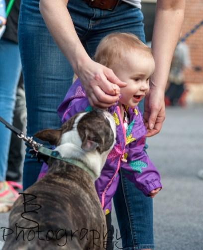 Even human puppies were around.