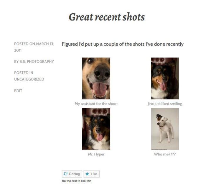 RecentShotsBlogPost