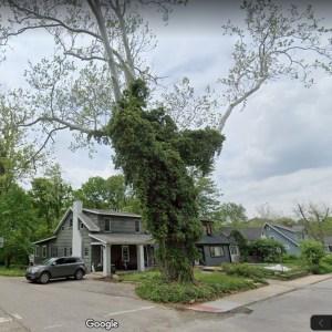 Google Street View sycamore Screen Shot 2019-09-21 at 11.49.48 AM