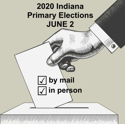 cropped primary voting