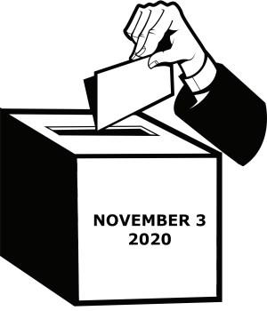 nov. 3 new poll vote