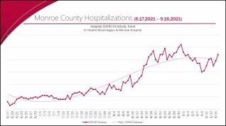 hospitalizations Screen Shot 2021-09-17 at 1.31.26 PM