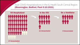 vacccinations and hospitalizations Screen Shot 2021-09-10 at 1.31.00 PM