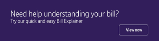 Image result for Monthly bill explainer