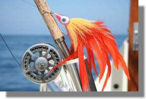 What flies - Orange Shark Bomb