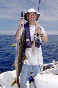 Kelp paddy yellowtail, light tackle