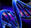 DNA Block Chain Project Boosts Research, Preserves Patient Anonymity