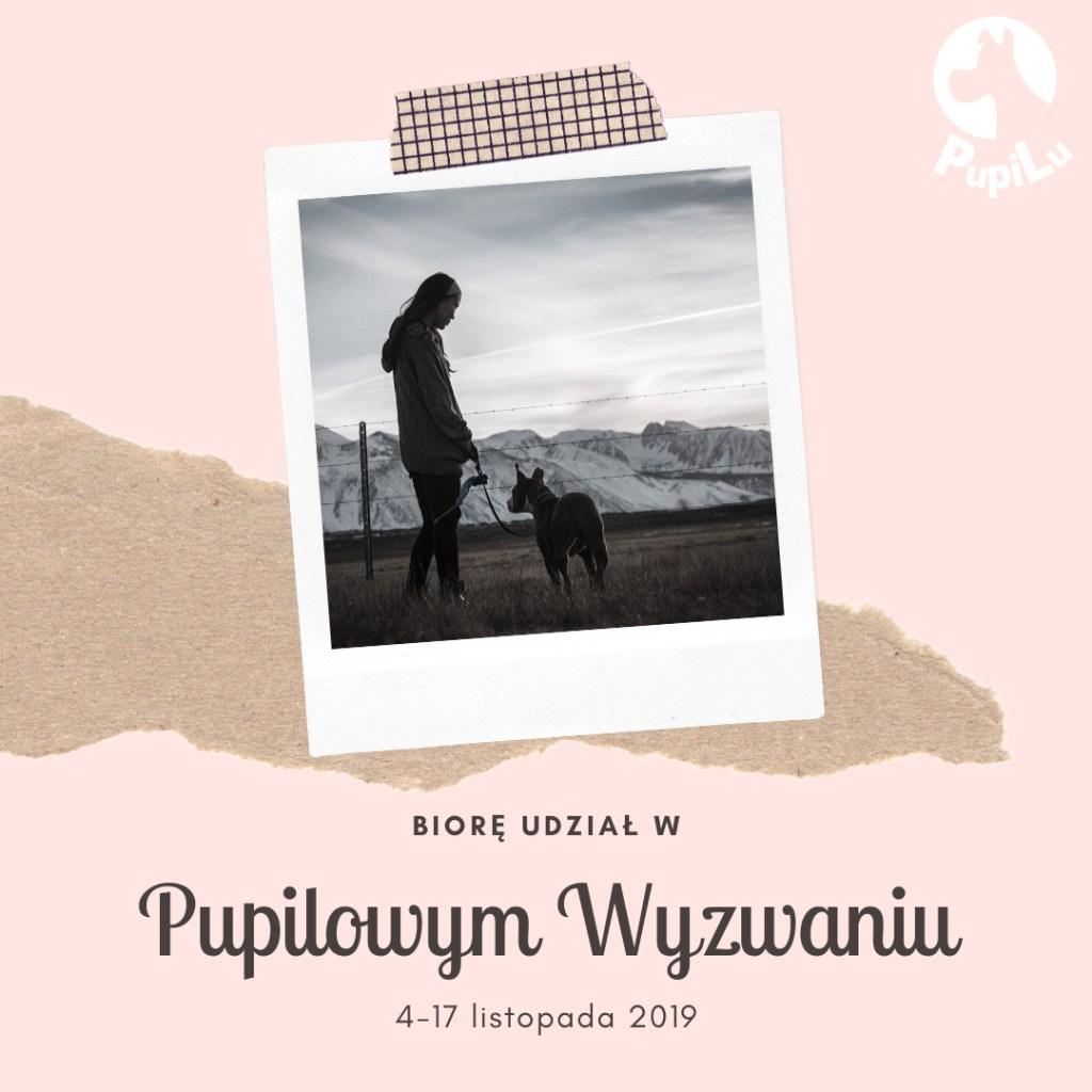 pupilowe wyzwanie - bthegreat.pl