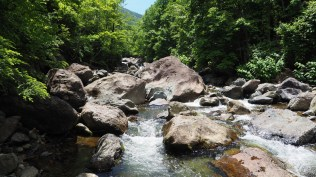 大岩ゴロゴロの最上流
