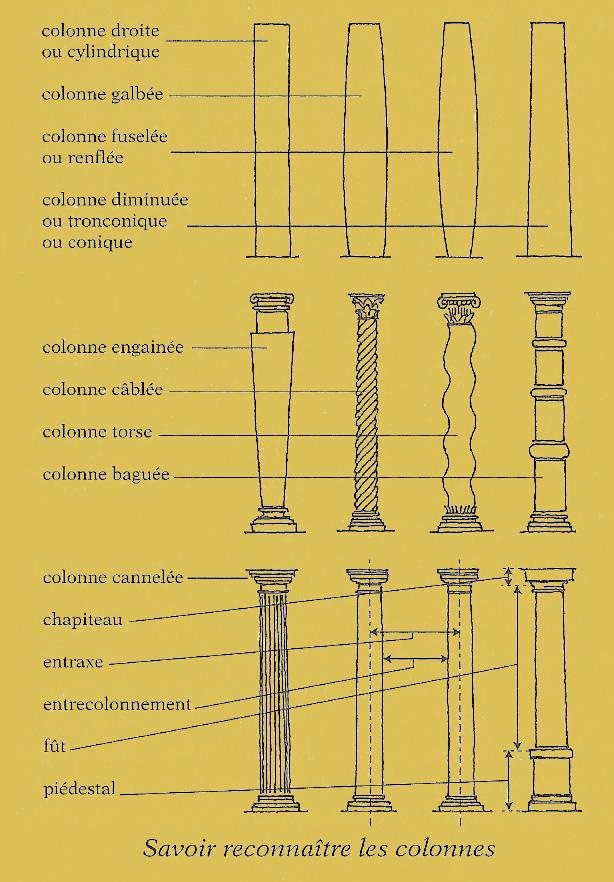 savoire reconnaître les colonnes