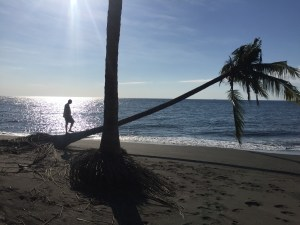 3.2 ht Black sand beachfront investment property, North Shore, Lombok 4