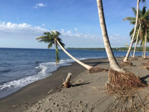 3.2 ht Black sand beachfront investment property, North Shore, Lombok 5