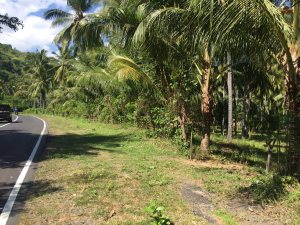 1.4 ht Beachfront Investment Property Lombok, Indonesia
