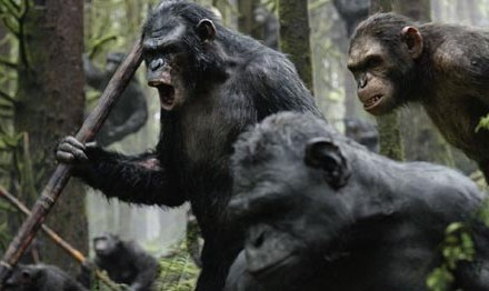 Movie Reviews: Dawn of the Planet of the Apes, Transformers Age of Extinction, Pompeii