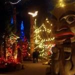 Vlog #3: Canyon Lights at Capilano Suspension Bridge