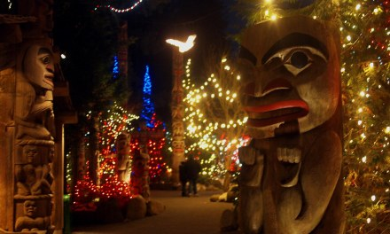 Vlog #3: Canyon Lights at Capilano Suspension Bridge