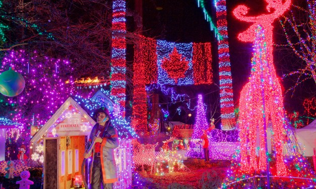 GIVEAWAY: Bright Nights in Stanley Park 2017