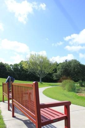 Perkins Road Community Park Baton Rouge Louisiana (58)