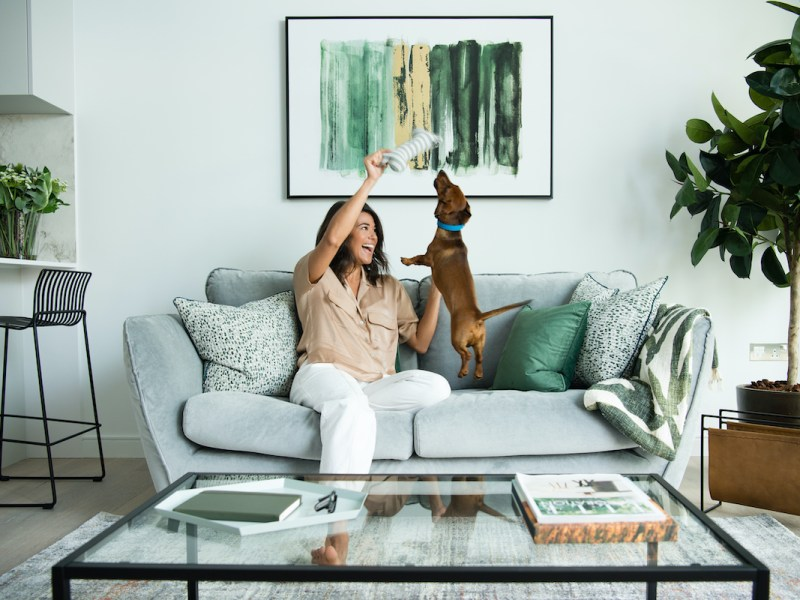 8 Water Street pet friendly apartment lifestyle - Vertus | BTR News