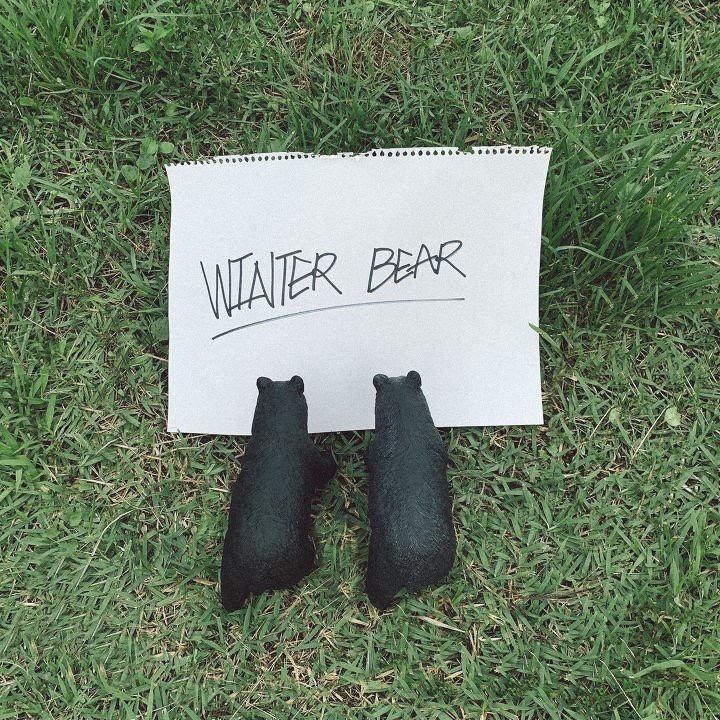 winter bear bts123. Black Bedroom Furniture Sets. Home Design Ideas