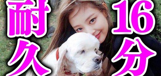 【動画】ジェニーが16分間そばにいてくれる動画 with 愛犬【作業用】【BLACKPINK日本語字幕】
