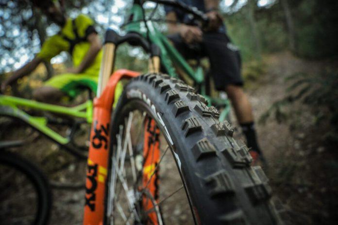 Vittoria Mazza Trail E Enduro Em Teste | Pneus Vittoria Mazza