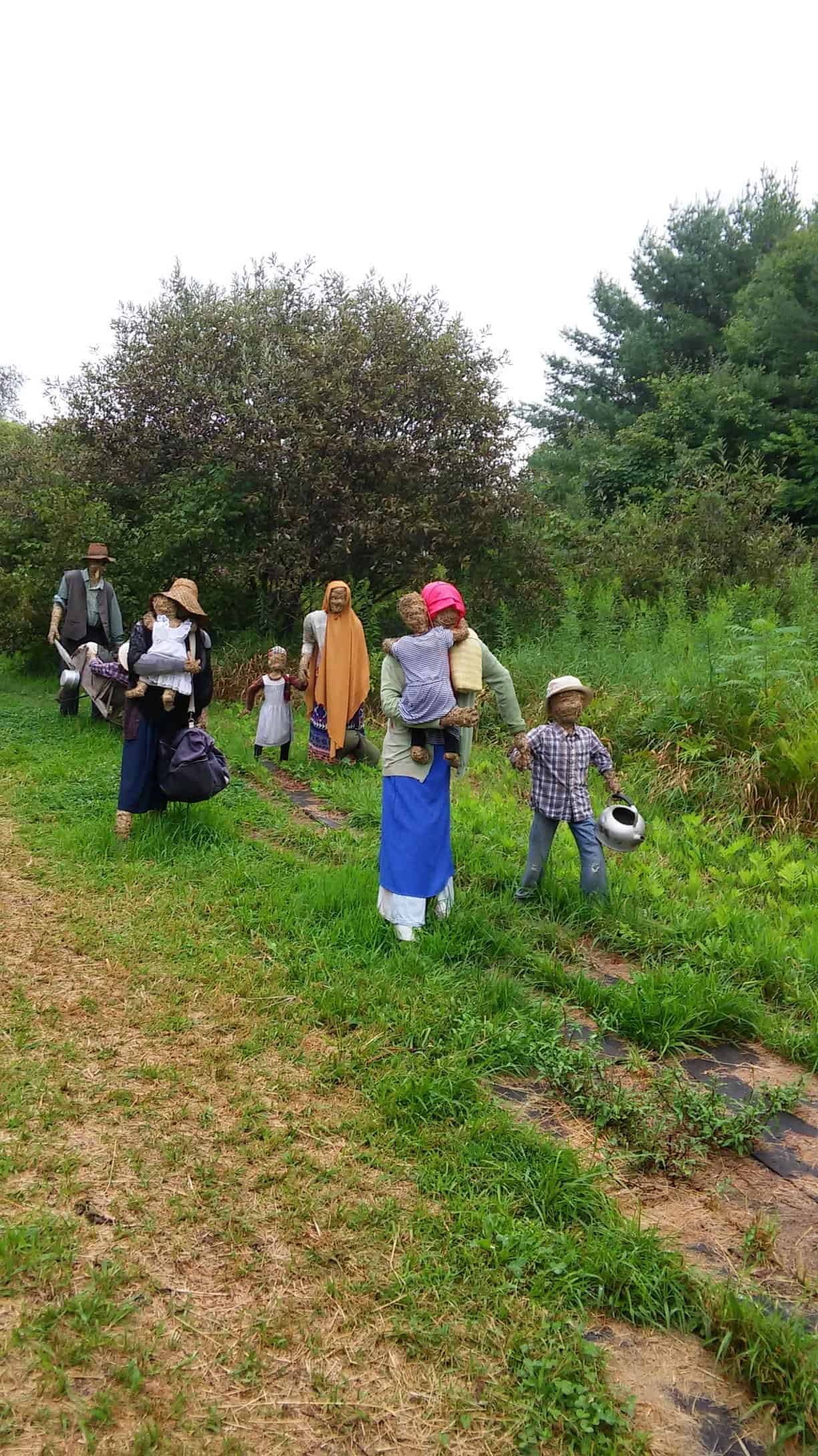 Refugees walk in the fields — (hint) at an orchard in Easthampton. Photo by Thom Smith