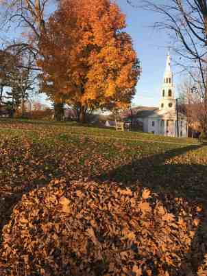 Someone understands the glory of a good leaf pile at Williams College. Photo by Kate Abbott