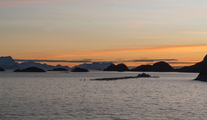 Visteelt Noorwegen Kustlijn Zonsondergang Viskwekerij Fjord