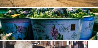 Landbouw Tuinbouw Veeteelt Agrarische Activiteiten Landbouw Boerenbedrijf
