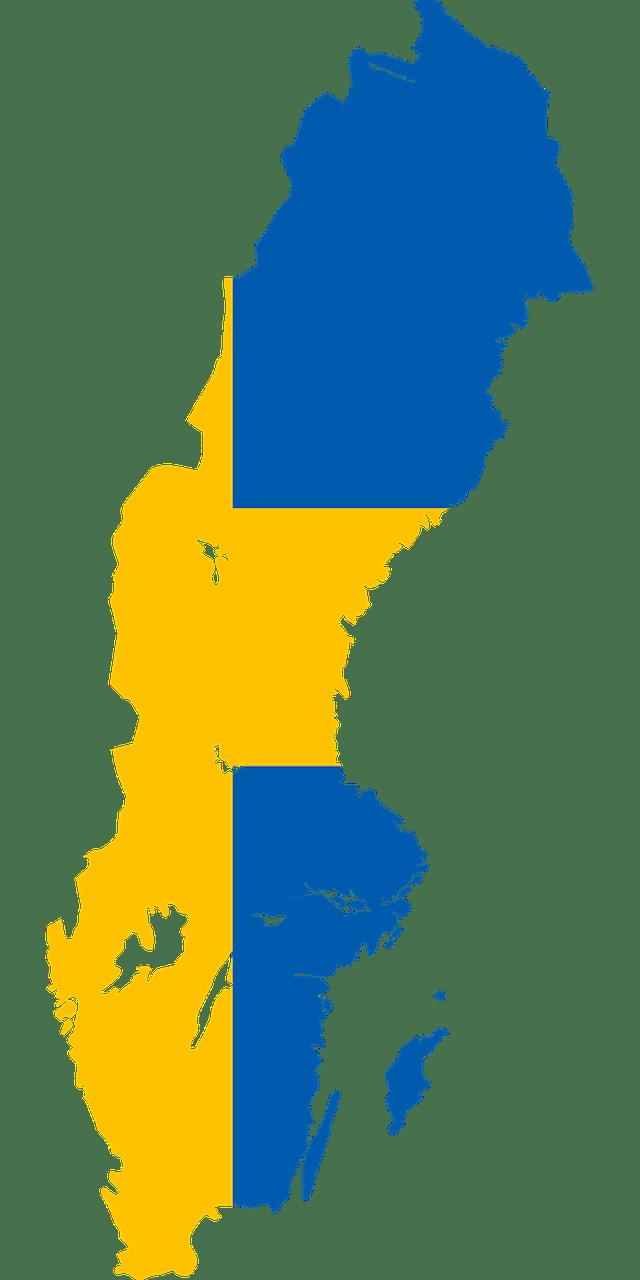 Zweedse vlag in de vorm van Zweden