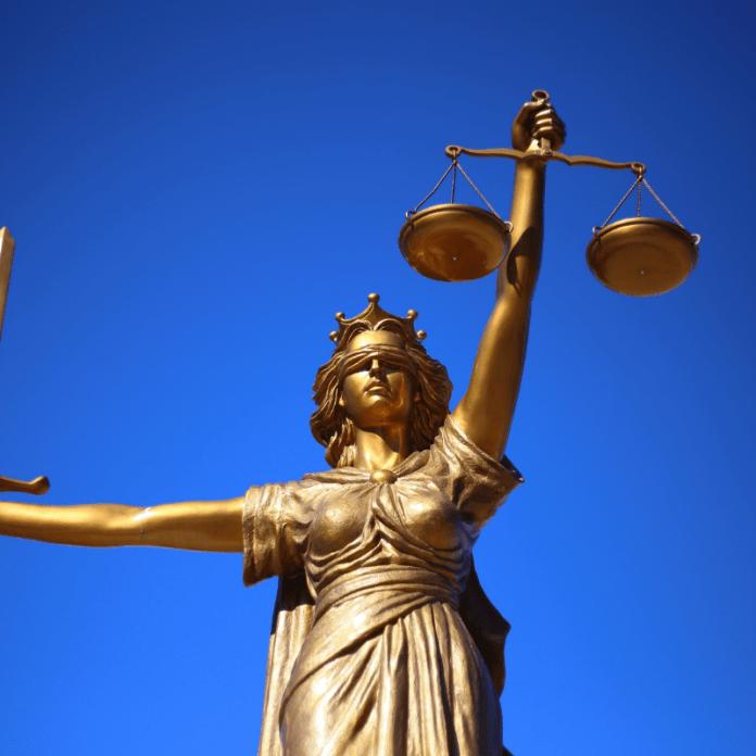 Getuige Deskundige Rechtbank Recht Justitie