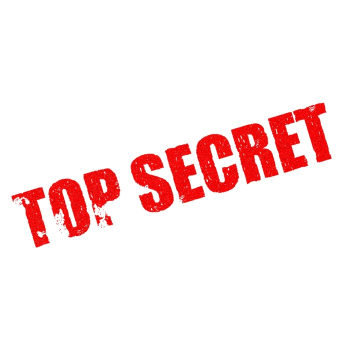 geheimhouding top secret geheim