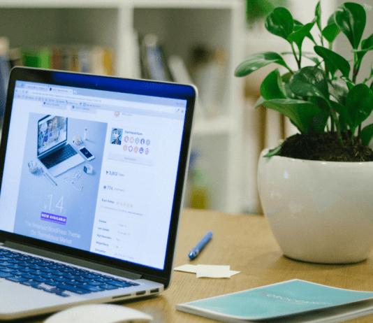 Website Webwinkel Computer Laptop Plant Muis