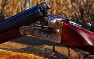 ИЖ 49 (ружье) - характеристики, плюсы и минусы.